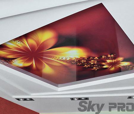 Натяжные потолки с фотопечатью зал фото
